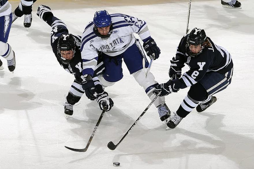 ice-hockey-puck-players-game-pass-forward-contact-sticks-goal
