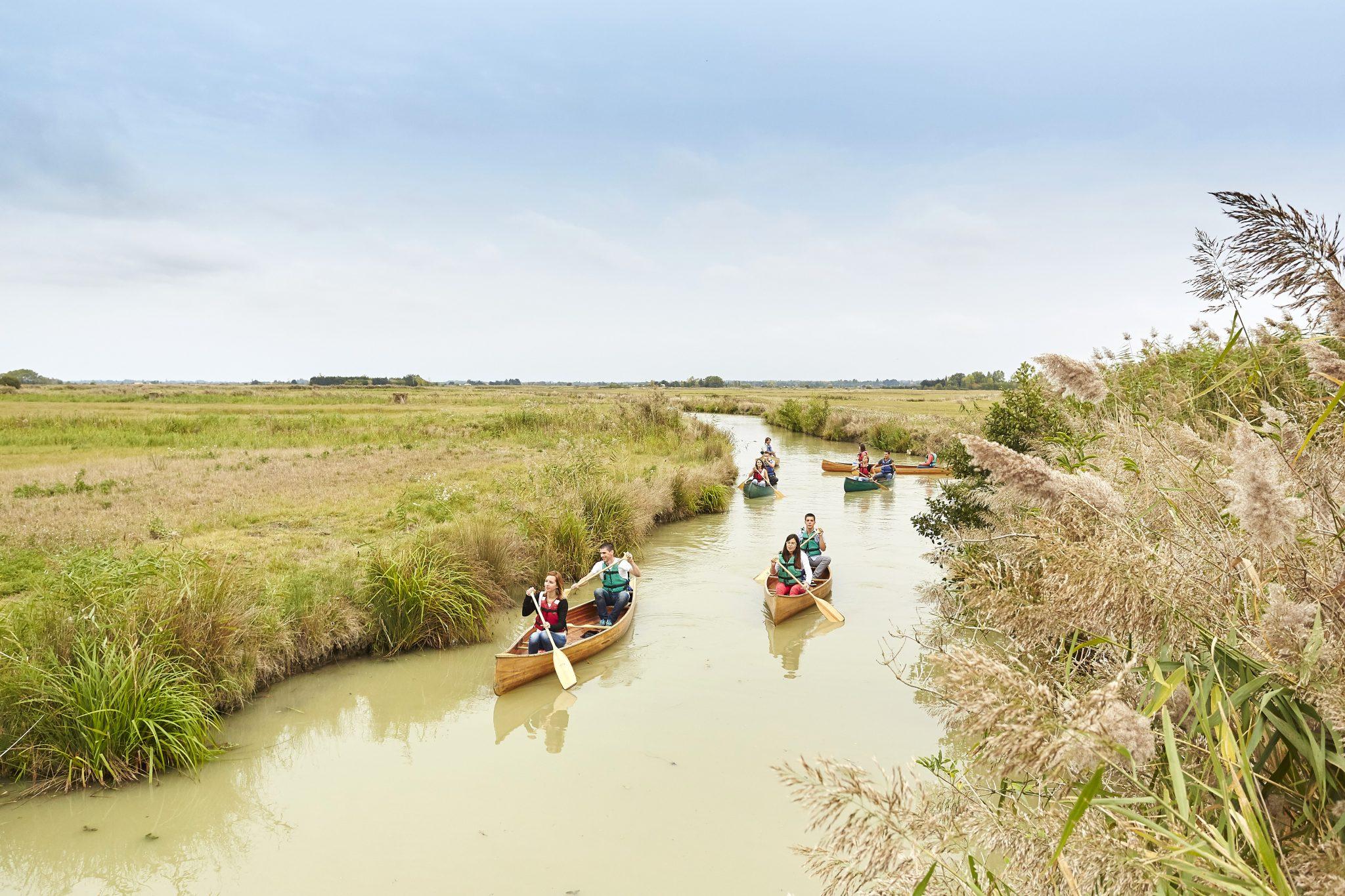canoe-sturbain-recto